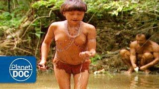 Tribu aislada en el Amazonas. Yanomamis