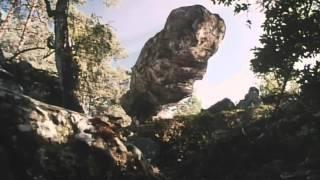 Pola X Leos Carax Trailer/Zwiastun 1