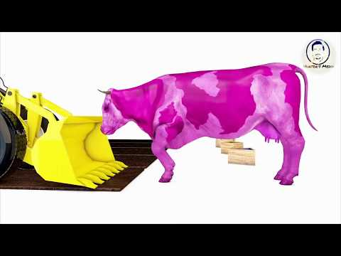 Cow Bulldozer Truck | Learn Shapes Cow Grass W Cartoon 3D Nursery Rhymes | Songs For Children