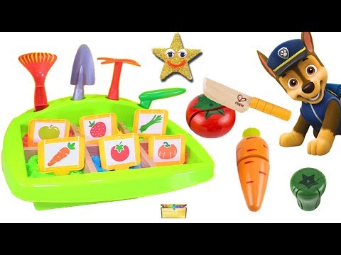 Xxx Mp4 PAW PATROL Grows Fruits Vegetables In Kinetic Sand Garden Game Chase Skye Surprise Toys 3gp Sex