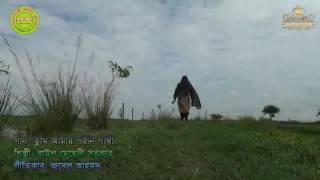 এই বছরের সেরা মিউজিক বিডিও - তুই আমার পরান পাখি (২০১৬) শিল্পী মেহেদি সরকার