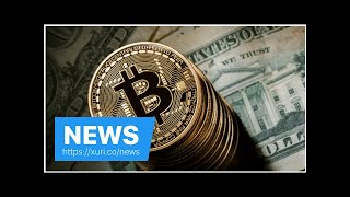 News - Fear rules the hammer $10.000 under half the peak, bitcoin