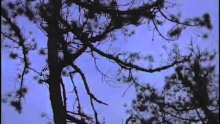 wakan tanka - le chemin de l'esprit - el camino del espiritu 1