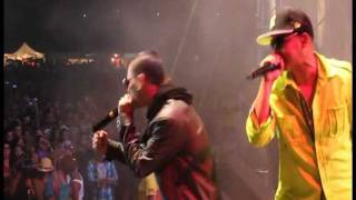 Baby Rasta y Gringo Feat Daddy Yankee y Don Omar (Guaya Guaya Fest 2010)