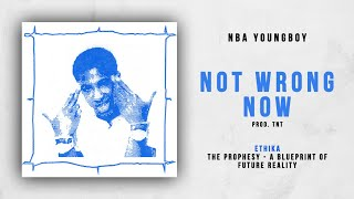 NBA YoungBoy - Not Wrong Now (Ethika - The Prophesy)