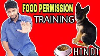 how to train your dog to wait for food in hindi : dog training in hindi