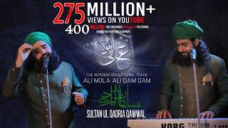 ALI MOLA ALI DAM DAM   Official Full Track   Remix   Tiktok Famous   2019   Sultan Ul Qadria Qawwal.