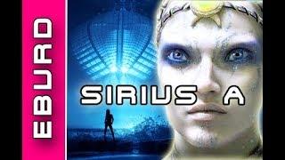 Alien Rassen die mit uns in Kontakt stehen - Die Sirianer von Sirius