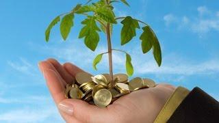 المشروعات الصغيرة ودور هام في دعم التنمية والاقتصاد المصري