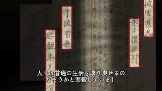 南京大屠杀 (Nanking Massacre)