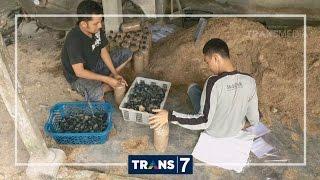 ORANG PINGGIRAN - SETANGKUP HARAPAN ANAK BURUH JAMUR (29/9/16) 3-1