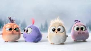 Angry Birds - O Filme | Feliz Natal!