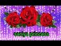 """Saniya princess"" name whatsapp status video || baaton ko Teri hum bhula na sake||"
