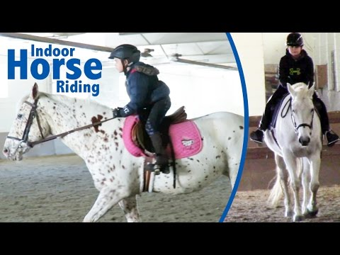 Xxx Mp4 First Time Horse Riding In An Indoor Arena 3gp Sex