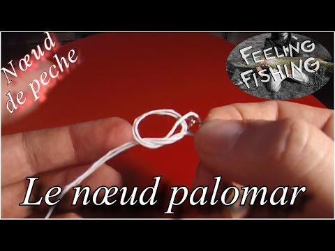 Nœud de peche : le nœud palomar ( agrafe, émérillon )