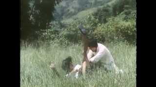 Bruce Li İntikam Peşinde VHS - Bruce Lee Invincible