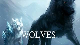"""Wolves"" By Sam Tinnesz Ft. Silverberg"