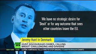 Hunt discourages Danes, calling Brexit