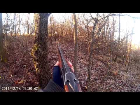 Лов � а дива сви� я Wild boar hunting Bulgaria