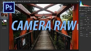 How to Use Camera Raw in Adobe Photoshop CC 2017