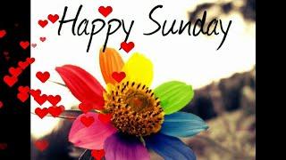 Happy Sunday & good wishes video song mp4 WhatsApp status