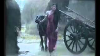 Grameen Phone Amare sariya