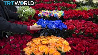 Money Talks: Turkey aims for $500M flower exports