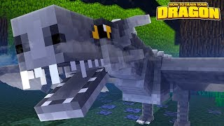 OLDEST DRAGON IN THE WORLD! - How To Train Your Dragon w/TinyTurtle