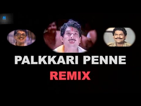 Xxx Mp4 Palkkari Penne Remix Jagathy Sreekumar New Malayalam Song Remix 3gp Sex