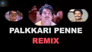Palkkari Penne Remix | Jagathy Sreekumar | New Malayalam Song Remix