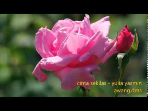 Download cinta sekilas - yulia yasmin - Pop Mandarin Indonesia free