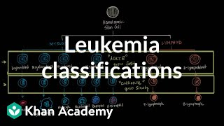Leukemia classifications | Hematologic System Diseases | NCLEX-RN | Khan Academy
