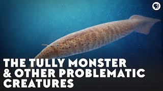 The Tully Monster & Other Problematic Creatures