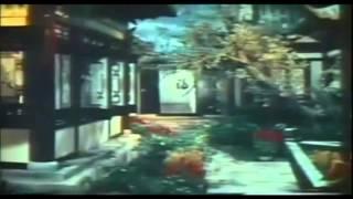 Chinese Super Ninjas (1982)