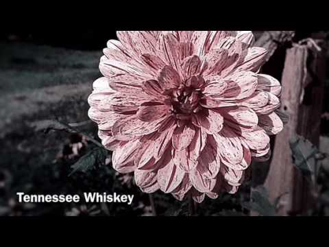Download Tennessee Whiskey - Jonathan H