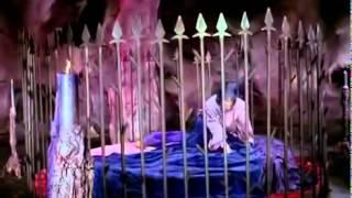 Tinerete Fara Batranete 1969   YouTube1