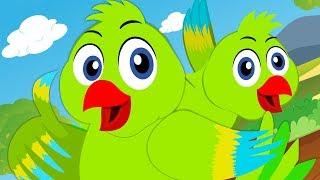 Main Tota Main Tota | मैं तोता मैं तोता | हिंदी कविता | Rhymes in Hindi | Hindi Balgeet | Kids TV