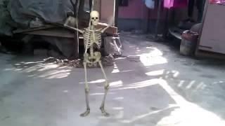 কংকালের নাচ!!(dance)