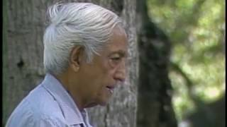 How am I to have a global vision? | J. Krishnamurti