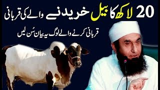 [Qurbani 2017] Sacrifice of 2 Million Rupees Bull (بیل) Important Bayan by Maulana Tariq Jameel