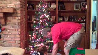 2014 11 28 - Decorating Teta's Christmas Tree