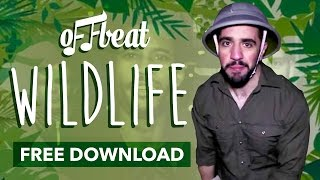 Offbeat - Wildlife ft Nicola Jayne