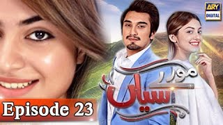 Moray Saiyaan Ep 23 - 16th April 2017 - ARY Digital Drama
