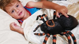 🎶 INCY WINCY ARAÑA PEQUEÑITA 🎶 Itsy Bitsy Spider Español | Canciones Infantiles | Nursery Rhymes