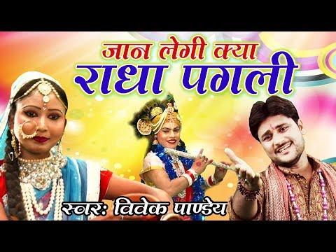 Xxx Mp4 Latest Krishan Bhajan 2017 Jaan Lagi Kya Radha Pagali Vivek Panday Hd Video Song 3gp Sex