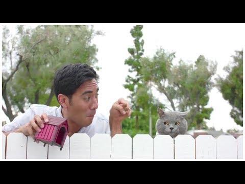 Top Zach King Magic Tricks 2017 Best Halloween Magic Tricks Ever