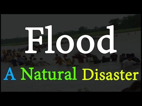 Flood A Natural Disaster Environmental Science EVS LetsTute