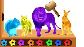 Learn Colors with  Animals Soccer Balls Wooden Hammer Xylophone Toys for Kids Children Toddlers