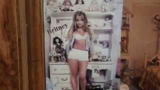 The Britney Spears Museum