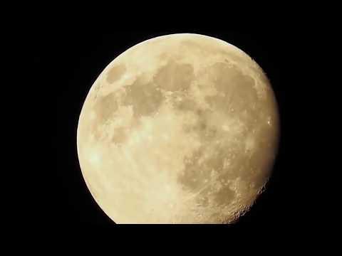 Xxx Mp4 SpaceX Starman Tesla Moon Transit Tesla Driving In Space Heavy Falcon 3gp Sex